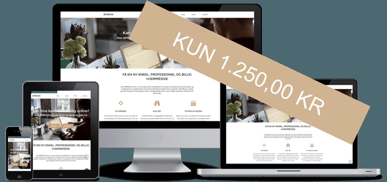 Ny billig professionel hjemmeside for kun 2250 kr.